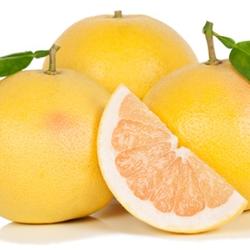 White Grapefruit Citrus Key Accord Fragrance