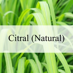 Citral - Natural