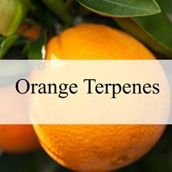 Perfumers Apprentice - Orange Terpenes**