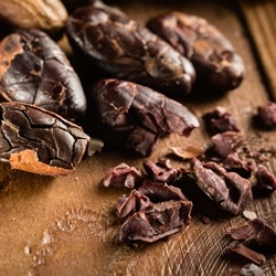 Cocoa Roasted Extract 10% MPG